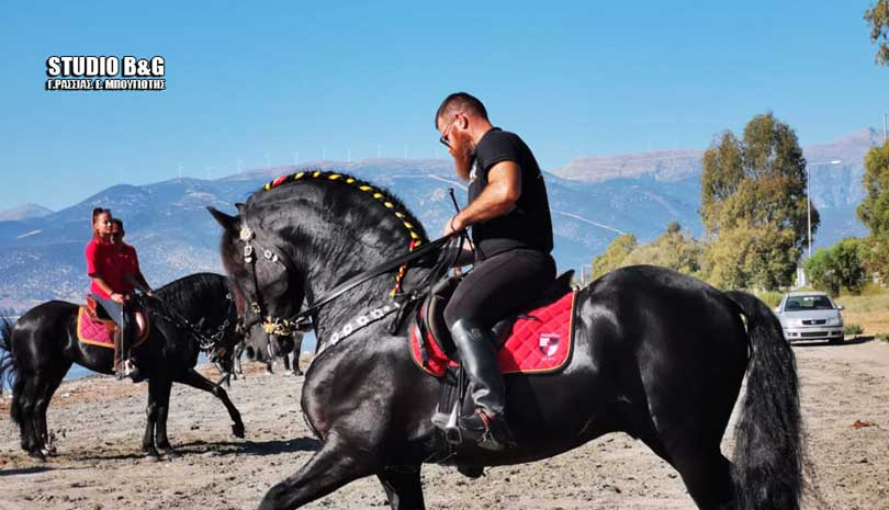 Δεκάδες πανέμορφα άλογα στην Αργολίδα