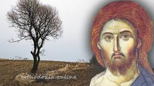 Κυριακή Δ΄ Λουκά : Η παραβολή του σπορέως Δημήτριος Παναγόπουλος