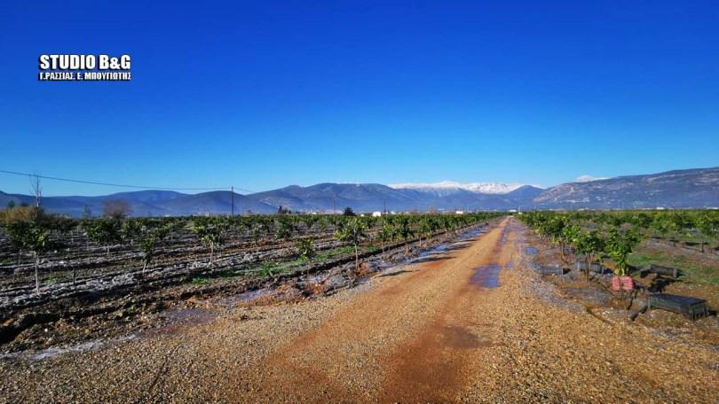 Ζημιές από την κακοκαιρία Μήδεια στον Αργολικό κάμπο | Ελλάδα | αργολιδα | αγροτεσ | Ελλάδα | Ορθοδοξία | online