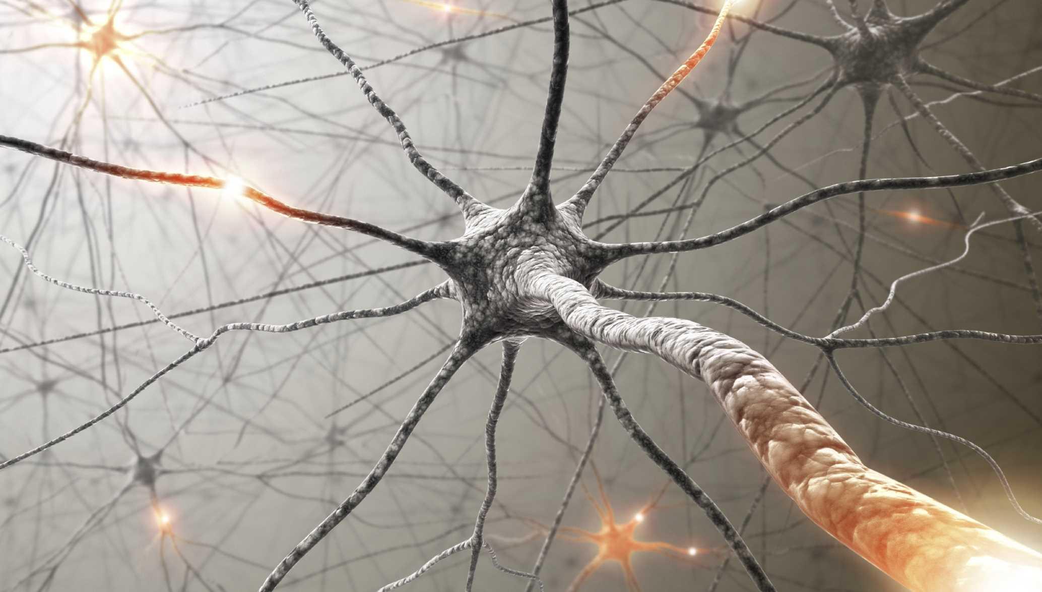 bio-spark-science (1)