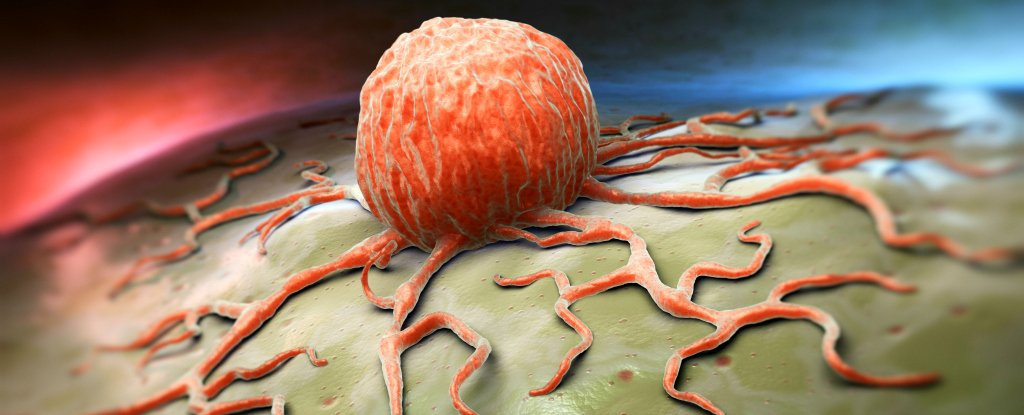 CancerCell_web_1024
