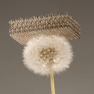 aerogel-on-dandelion