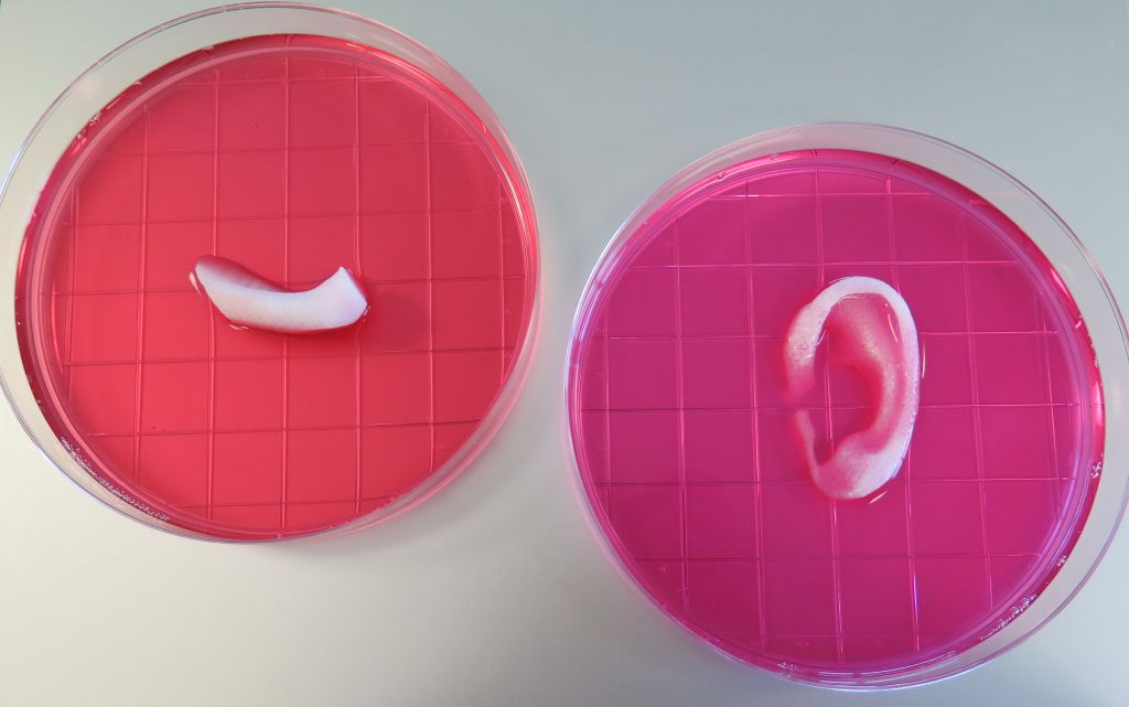 blog-3003-3D-printed-skins-and-tissues