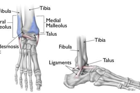 interior ankle injury » Full HD MAPS Locations - Another World ...