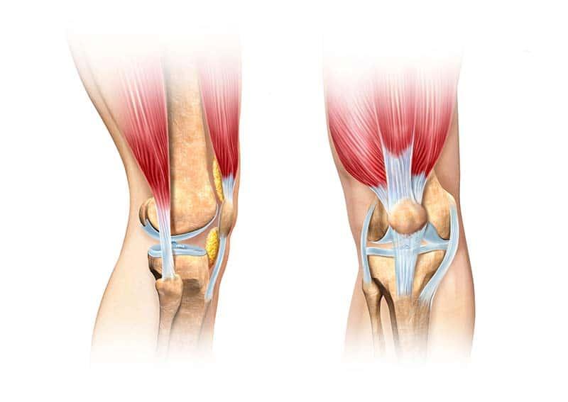 knieschmerzen behandeln diagnose