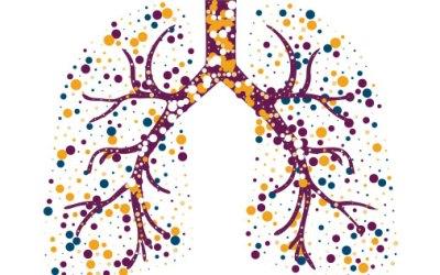 Respiração Saúde, performance & Lifestyle