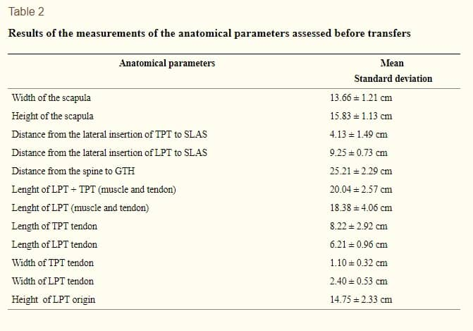 Transferência do Músculo Trapézio para rotação externa do ombro estudo anatômico tabela 2