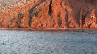 Roter Strand - Isla Rábida
