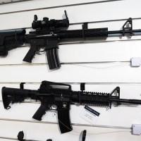 AR-15 Vreček-Arms iz Kranja