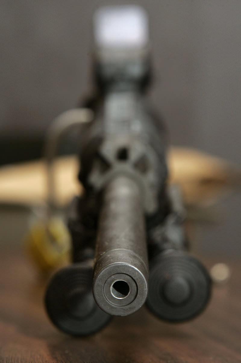 Inkriminisani Bushmaster XM15-E2S