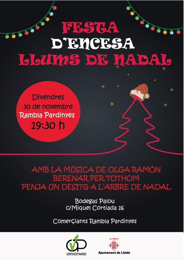 Comença el Nadal a Pardinyes