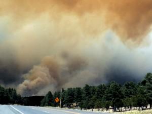 """Incendi:ancora una """"giornata di fuoco"""" per Vvf, Agenzia Forestale e i volontari della ProCiv dell'Orvietano"""