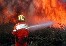 Incendi: iniziata la caccia al  piromane
