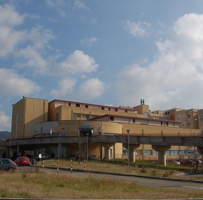 "Punture d'insetto, Usl Umbria 2: ""L'ospedale di Orvieto è in grado di affrontare tali situazioni"""