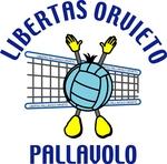 Libertas Pallavolo Orvieto. Il punto sull'attività giovanile maschile e di minivolley