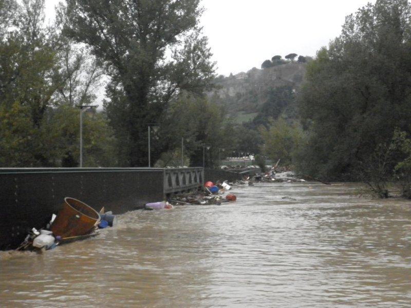 """""""Alluvione: nuovi interventi per il comparto agricolo"""""""