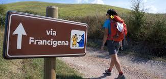 Acquapendente, valorizzazione e sviluppo della Via Francigena. Interpellanza urgente in consiglio