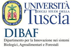 """All'Unitus c'è il """"Testimonial day"""" per favorire l'incontro tra Università e imprese"""