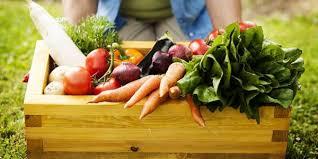 Allerona e Castel Viscardo si alleano per promozione prodotti agro alimentari filiera corta