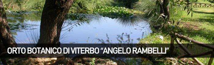 """""""FAI fiorire la cultura"""", evento all'orto botanico Angelo Rambelli presso Unitus"""