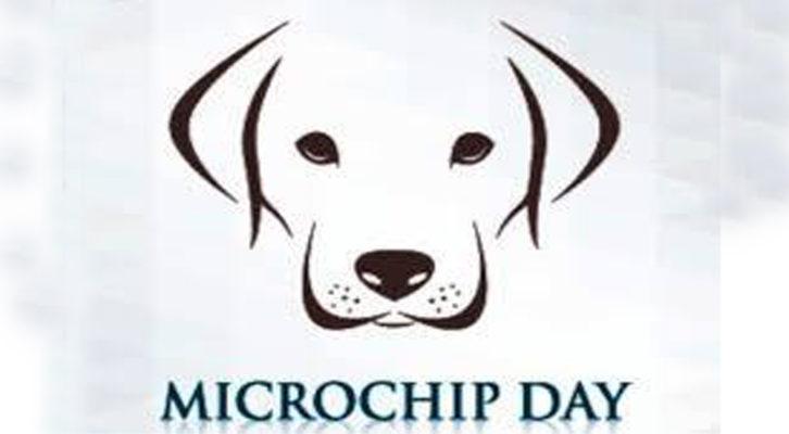 Acquapendente: Microchip day, Applicazione gratuita microchip per cani