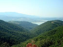 Presentato il Comitato di Allerona per progetto Ampliamento Riserva Biosfera Monte Peglia