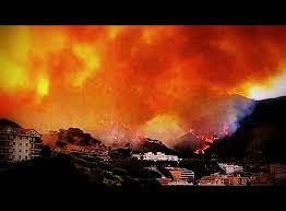 Fuoco devasta molte decine di ettari di terreno e un capannone con i VVF impegnati su più focolai