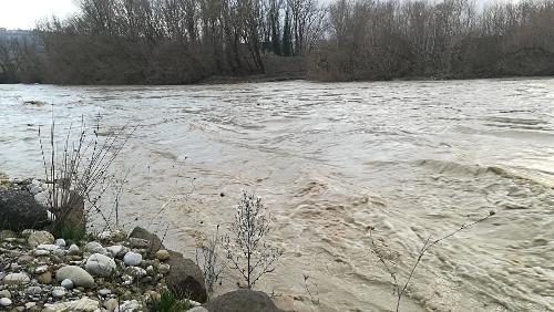 """Fiume Paglia, Comitato 12 Novembre: """"Nulla è stato fatto nei letti dei corsi d'acqua per mitigare il rischio esondazione/erosione"""""""