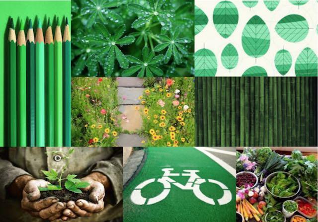 """""""Essere un cittadino green"""", al via il concorso fotografico con Cittaslow International"""