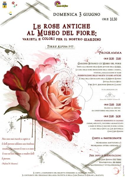 Le rose antiche al Museo del Fiore, un viaggio nelle fragranze botaniche alla riserva Monte Rufeno