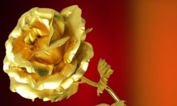 """""""IncontrArti: la Rosa D'Oro"""", ecco gli eventi collaterali all'ottava edizione del concorso"""