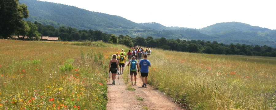 World Francigena Ultramarathon Walk, ptutto pronto per la camminata Radicofani-Acquapendente