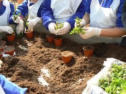 Psr Umbria 2014-2020, la Giunta regionale attiva misura per creazione e sviluppo agriturismi, fattorie didattiche e sociali