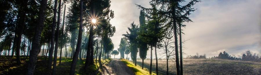 San Venanzo, riaperto percorso trekking del Filatello per collegamento Via Orvietana
