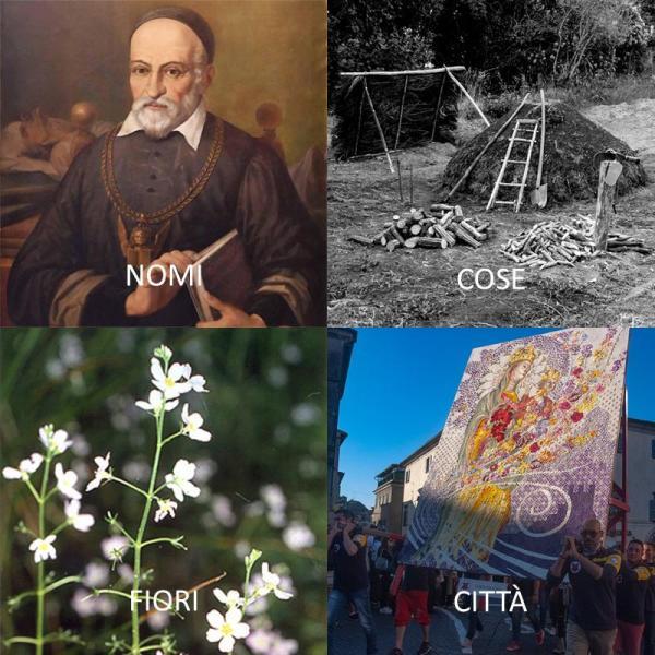 #NomiCoseCittà, il Museo naturalistico del Fiore partecipa alla sfida con Girolamo Fabrizi