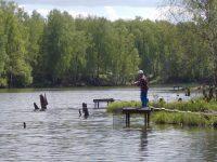 Как вязать экран для рыбалки