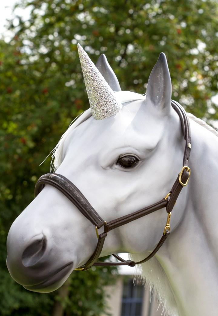 Stallhalfter Unicorn
