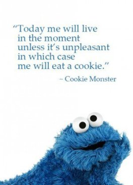 2004753555-cookie-monster-quote-cookie-quote-sesame-street-life-coach