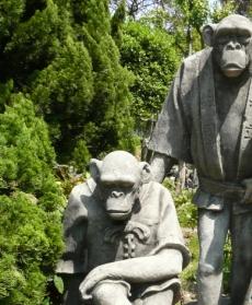 チンパンジー造