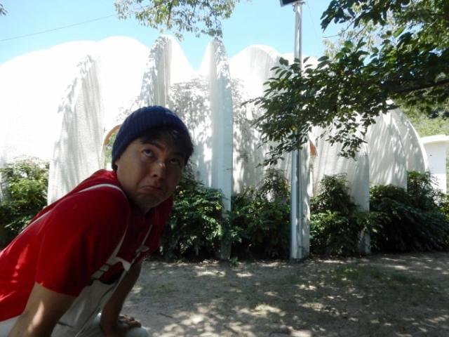 五月山公園 (22)