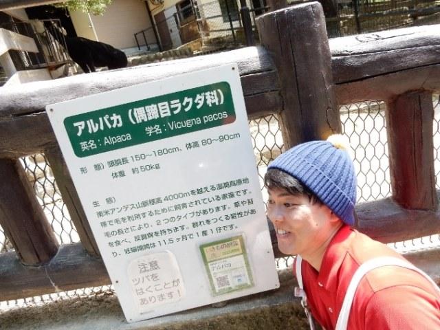 五月山動物園 (10)