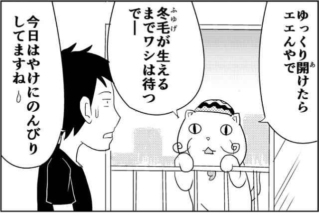 にゃっさん11-6