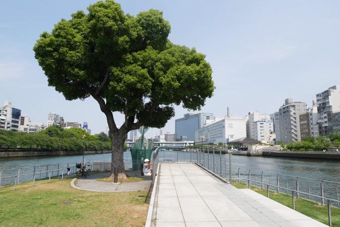 中之島公園-(29)
