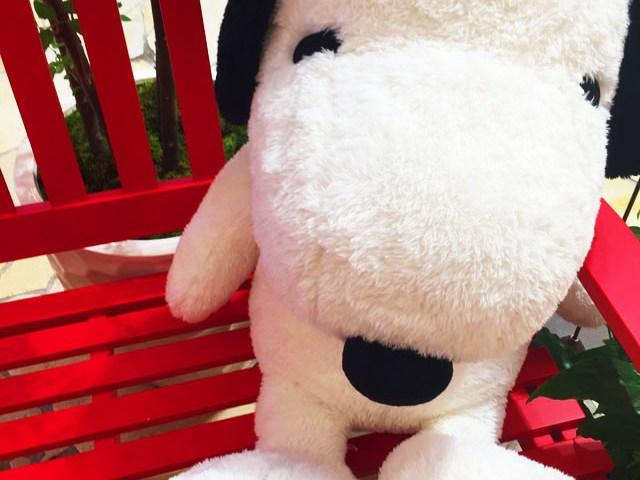 阪急うめだスヌーピーフェスティバル2016のベンチに座ってスヌーピーと写真撮影できるスペース