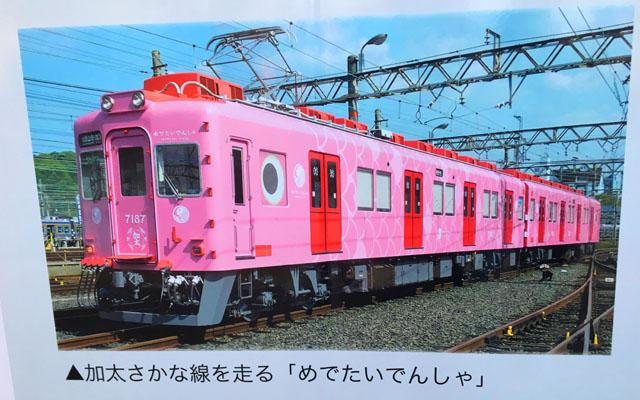 加太さかな線,めでたい電車,さち,ピンク色の電車色,南海電鉄,加太線,