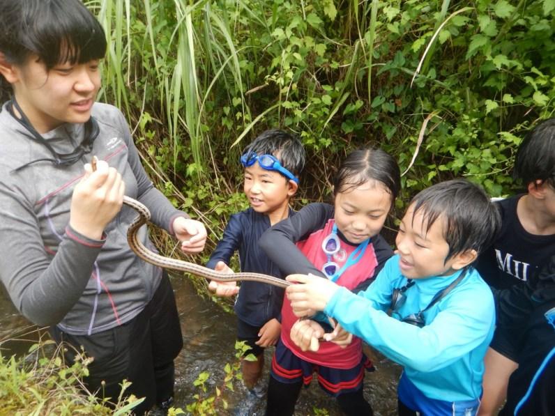 いなば西郷自然教室:弓河内班_資料写真01