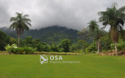 Osa Golf Update