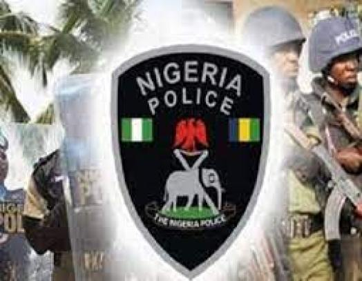 Police recover guns, live cartridges, other weapons from cultists in Anambra