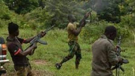 Kaduna: Bandits kill four, injure one in Igabi local government area -  Vanguard News
