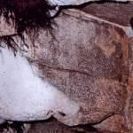 Jaskyňa zimné slnko